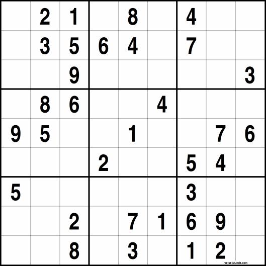 die welt sudoku